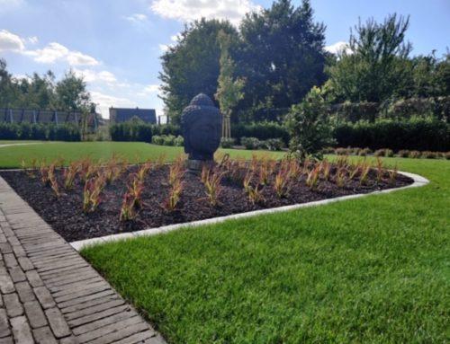 Mooie tuin voorjaar 2020